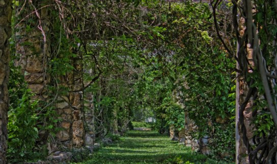 meRavine Gardens State Park,