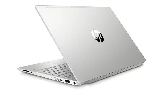 HP Pavilion 13-an1011nf Argent naturel