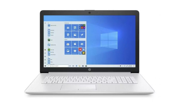 HP 17-ca1035nf Argent - SSD