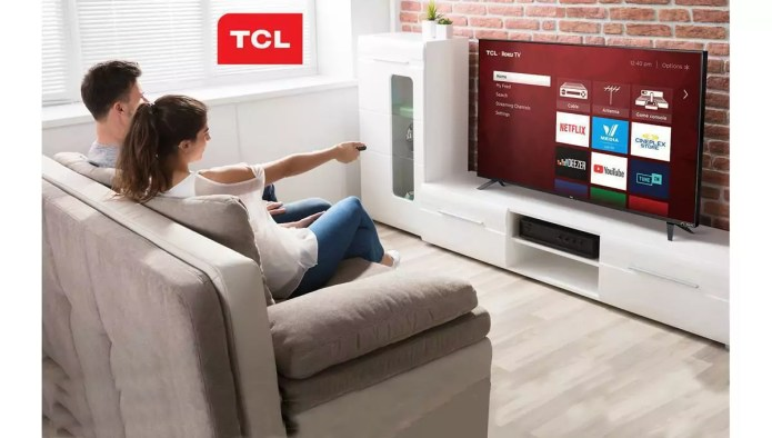 TCL 32S327-CA : Ein anderer TCL Fernseher