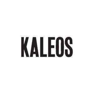 Logo KALEOS-page-001