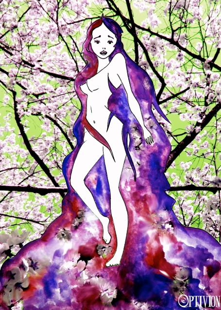 silent sakura - optivion