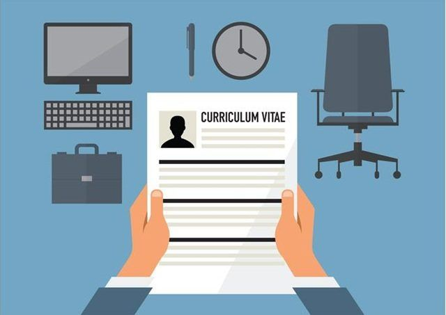 Curriculum vitae 3 Webs to Create Attractive and Professional CV