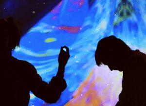 Blue Step : l'épopée électro-trad de Laura Wild