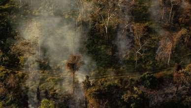 Amazônia tem segundo maior número de alertas de desmatamento da série do Deter-B
