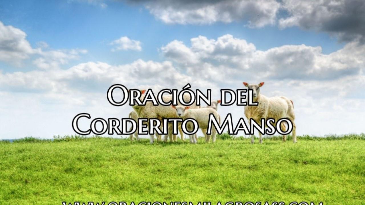 Oración del Corderito Manso - Oraciones Milagrosas