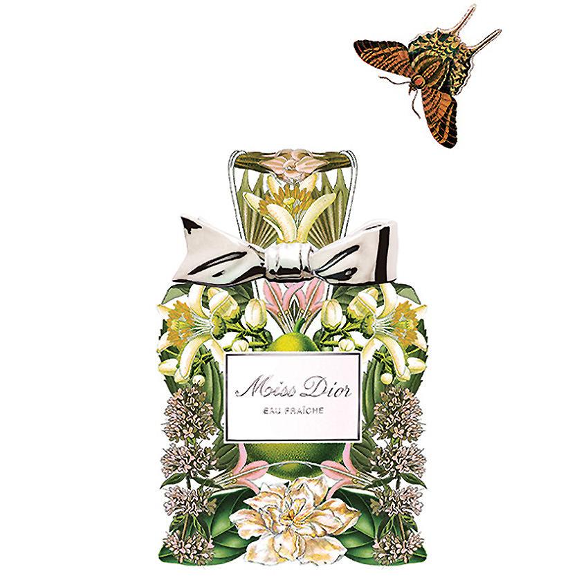 Sixto-Juan-Zavala-Perfumes