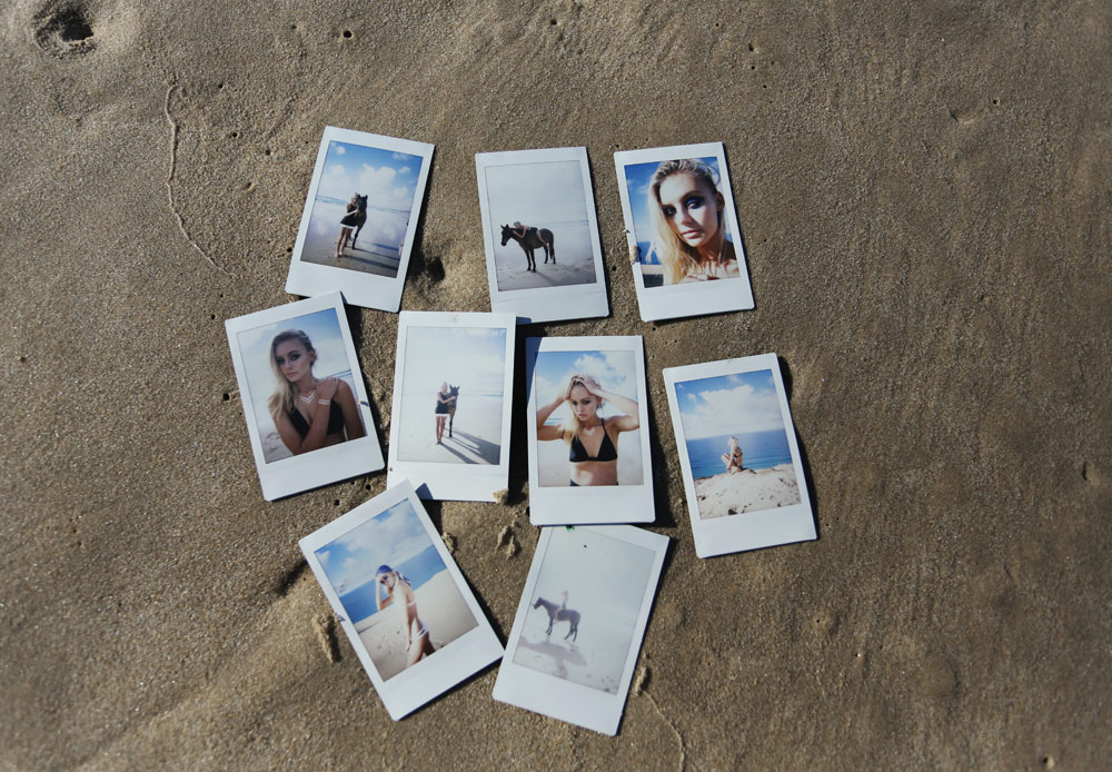 Nasty, Gal, Abbie, Heath, Horse, Polaroids, Oracle, Fox