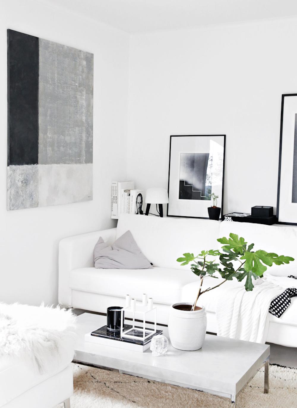 oracle, fox, sunday, sanctuary, black, white, grey, house, plants, monochrome, minimal, interior