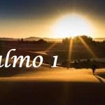 Salmo 1 – Para abençoar pessoas que querem alcançar um objetivo
