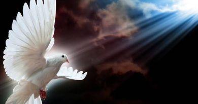 espírito santo - Oração do Espírito Santo Para Alcançar Uma Graça