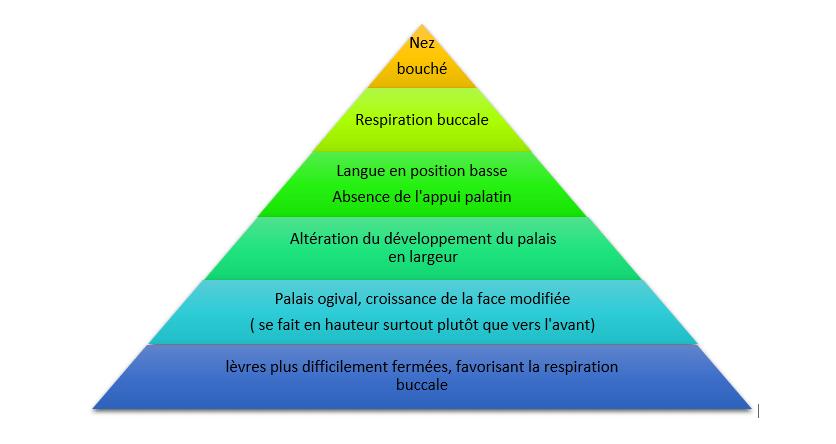 pyramide nez bouché