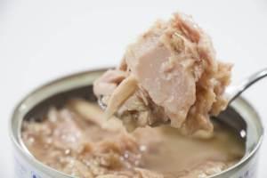 犬 ツナ缶 餌 ごはん ご飯 シーチキン 油 塩分 カロリー