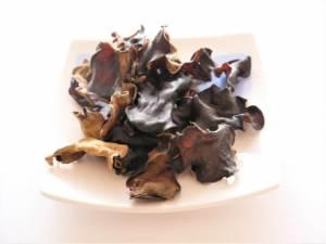 犬 キノコ きのこ シイタケ しめじ 舞茸 なめこ トリュフ 松茸 エリンギ えのき茸 きくらげ 食べれるキノコ種類