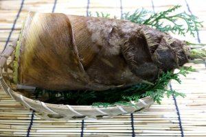 犬 たけのこ タケノコ 中毒 食べる 与える 下処理