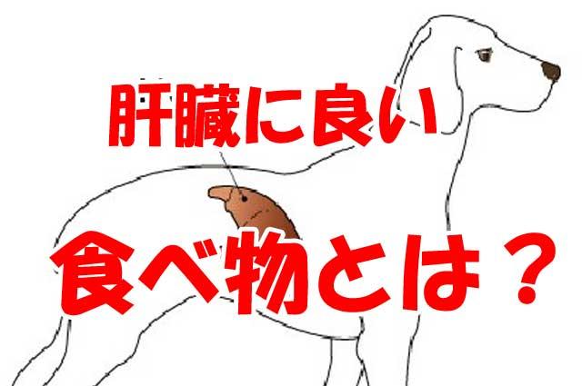 犬 肝臓 良い 食べ物