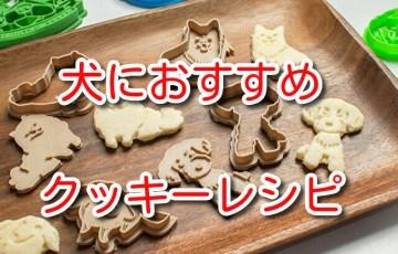 犬 クッキー レシピ