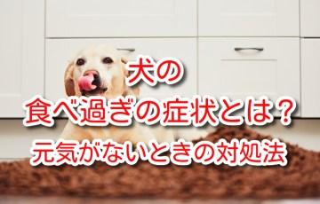 犬 食べ過ぎ 症状