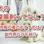 犬 整腸剤