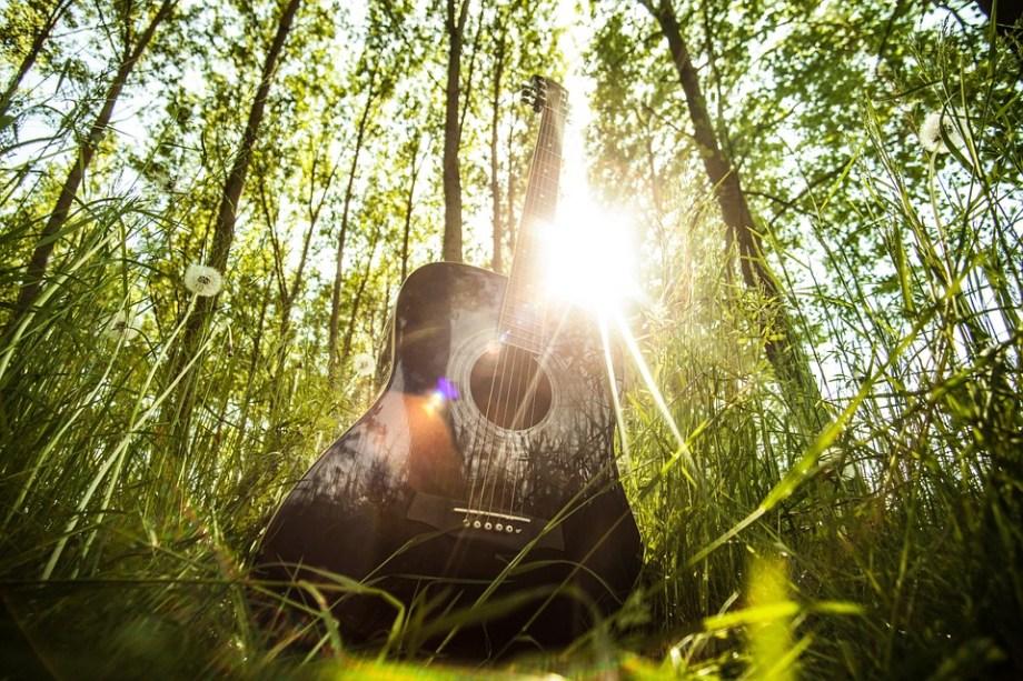 森の中のギター