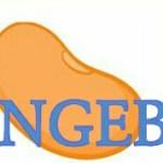 Logopit_1508344280604