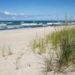 Indiana-dunes
