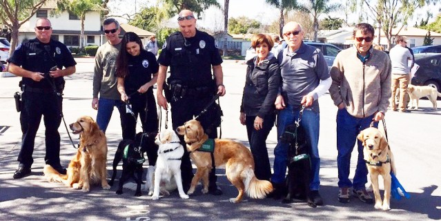 PUPPIES and police at the Westminster Police Department (WPD photo).