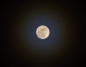 Hannah Babbitz Full Moon