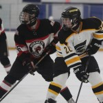 Boys' Hockey: Branford Comes Off A Loss To Defeat Amity