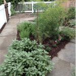 Mark Your Calendars For The Stone Otis Herb Garden and House Tour