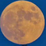 It Should Be A Nice Night To Check Out The Strawberry Full Moon