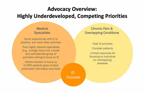 "Graphic titled ""Advocacy Overview: Highly Underdeveloped, Competing Priorities"" comprised of one large orange and one large yellow circle detailing information about ""Medical Specialists"" and ""Chronic Pain & Overlapping Conditions,"" respectively. Medical Specialists have some experience with IC (Interstitial Cystitis) but many competing priorities, and they are challenged with treating the disease due to limited actionable information and tools. Chronic pain conditions involves a host or priorities and complex patients. A smaller circle sits at the bottom center of the image reading ""IC-Focused."""