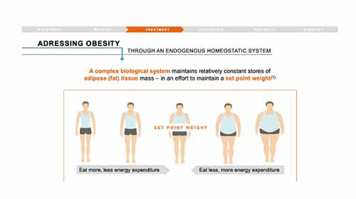 "Image title reads ""Addressing obesity through an endogenous homeostatic system"" and contains subtext reading ""A complex biological system maintains relatively constant stores of adipose (fat) tissue mass - in an effort to maintain a set point weight."" Image below text shows energy expenditure ratio to how much you eat through the illustration of five bodies, increasing in size from left to right."
