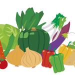 野菜 栄養が多い