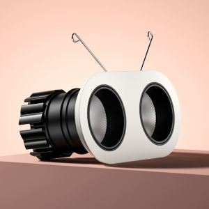 Dino Twin LED Downlight