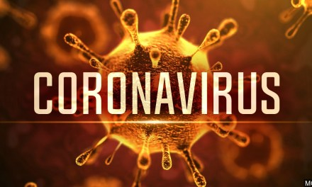 Coronavirus – Important information for Lodges