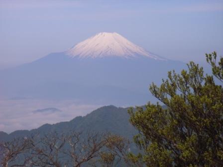 丹沢より富士山
