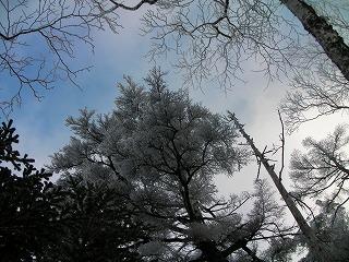 硫黄下霧氷