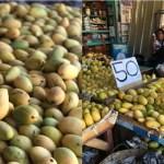 Akibat lebihan mangga, masyarakat Filipina terpaksa jual mangga dengan murah