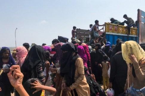 Rohingya Bot