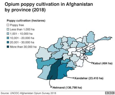 104773048 afghan chart
