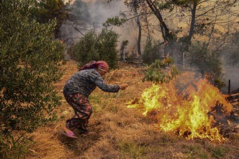kebakaran hutan kampung turki