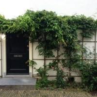 Utrecht's Urban Greenery