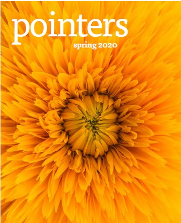 Pointers Shiatsu Journal front cover