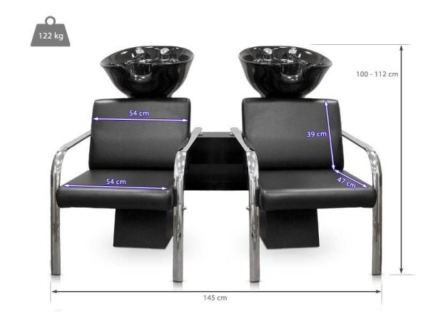 Twin Backwash Unit for Hair Salons 2