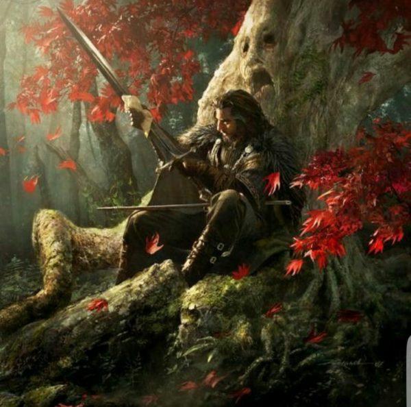 Greyhawk_Eophain-e-a-Lâmina-da-Lei-600x594 Heróis Selvagens | A Pedra de Kir - Parte II