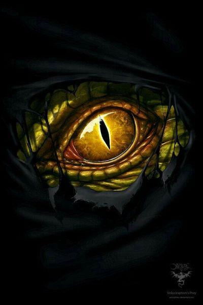 um-maligno-olho-ambar-observou-delgrim-400x600 Delgrim: Insônia e Pesadelo