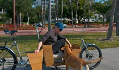 This Metrofiets cargo bike has a custom dog door for Katie