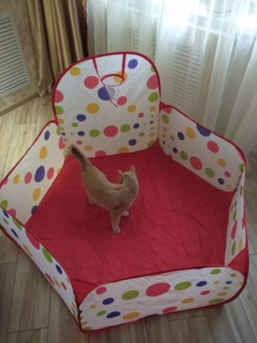 Baby Playpen Tent with Basketball Hoop photo review