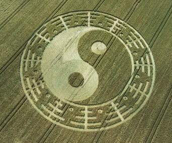 Crop Circles ying yang toroide